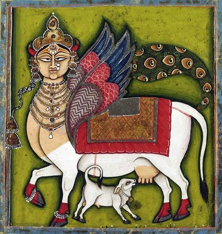 """Kamadhenu, The Wish-Granting Cow Made in Rajasthan, India c. 1825-55 Artist/maker unknown, India, Rajasthan, Jodhpur or Nathadwara Opaque watercolor and metallic pigments on paper 5 x 5 inches (12.7 x 12.7 cm) This vision of Kamadhenu, the Wish-Granting Cow, combines the white zebu cow with the crowned frontal female face, colourful """"eagle"""" wings, and peacock tail of Buraq, the animal that the prophet Muhammad rode to heaven in his night journey (Miraj). From at least the fifteenth century, Persian paintings showed Buraq with a horse's body, wings, and woman's face; the peacock tail may have been an Indian addition. Popular images of Kamadhenu in India today often show her as in this painting, which may be one of the earliest images to merge the visual characteristics of the Hindu Kamadhenu with the Islamic Buraq."""" Datecirca 1825-55 http://www.philamuseum.org/collections/permanent/88274.html?mulR=7702"""